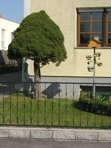 Garden near Krems
