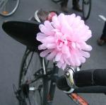RADpaRADe Flower