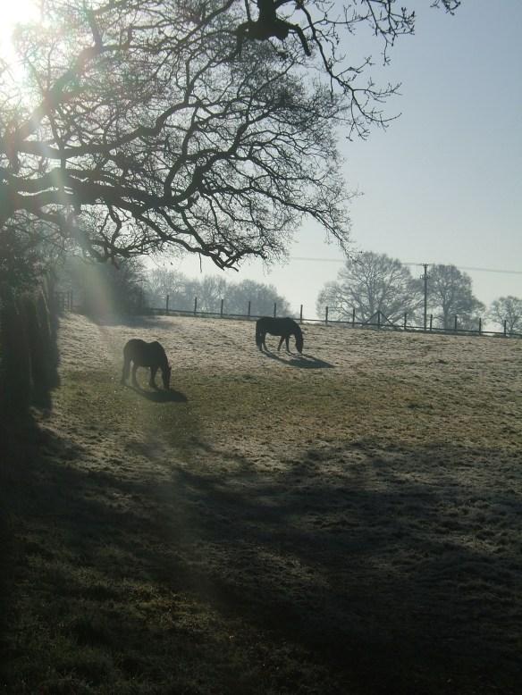 Berkshire, England