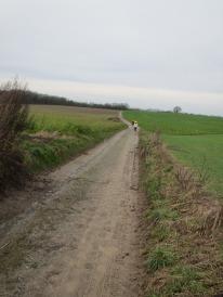 Battlefield path Waterloo
