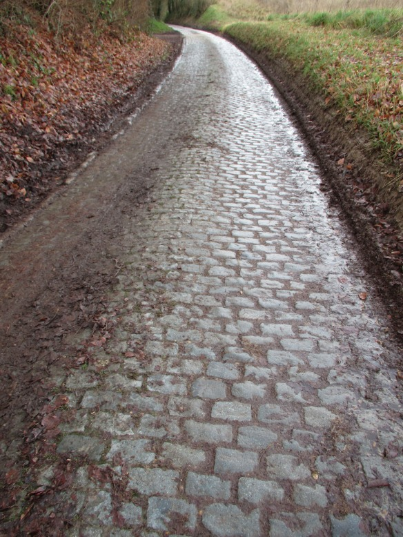 Cobbles of Lasne