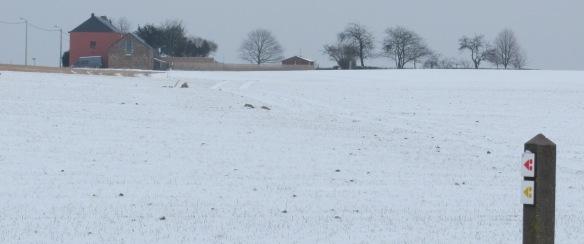 Snowy ride Belgium