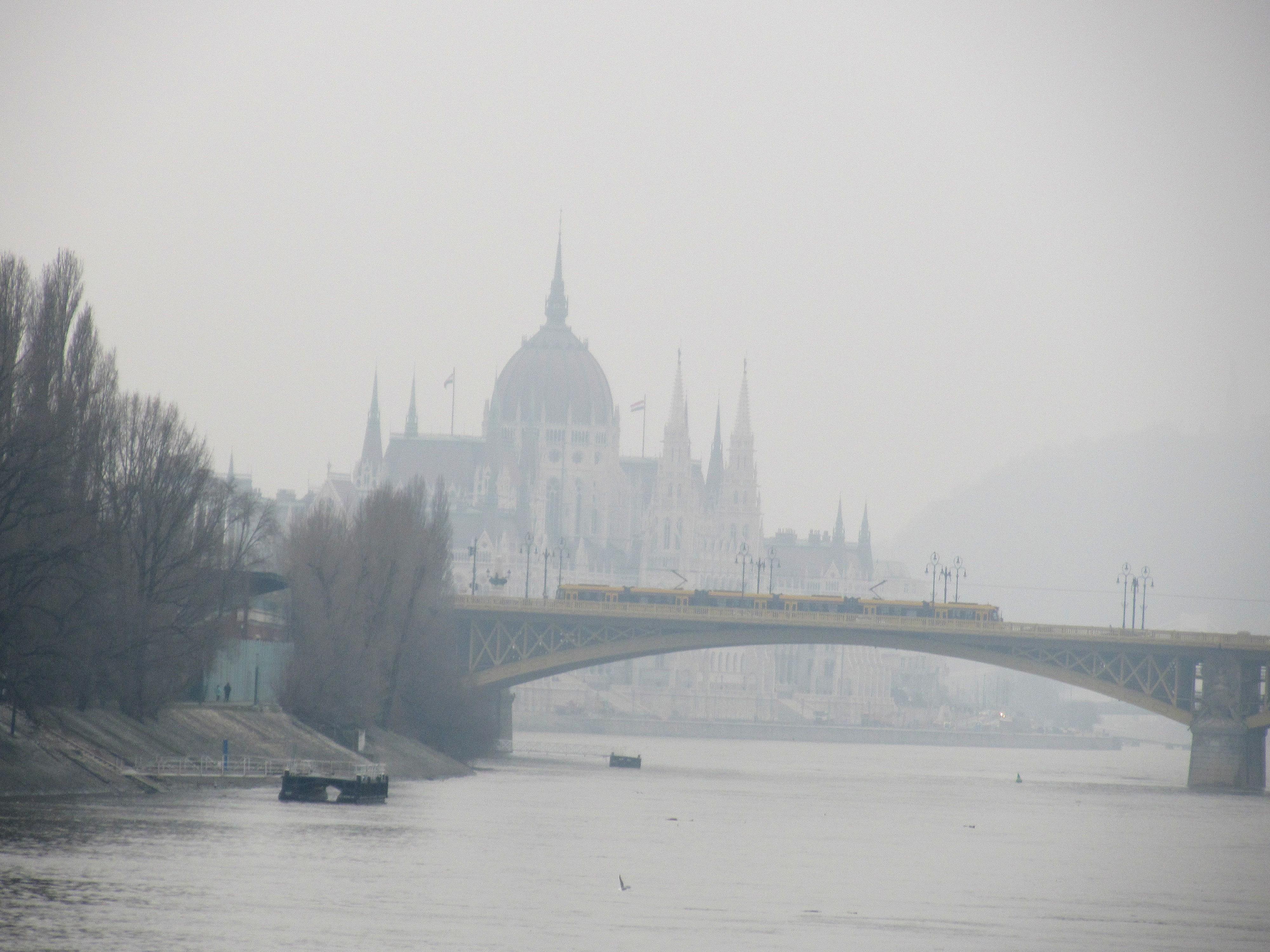 Misty Danube nude 456