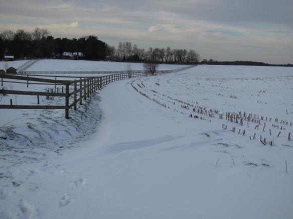 Wallon Brabant