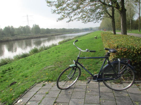 Dutch hire bike