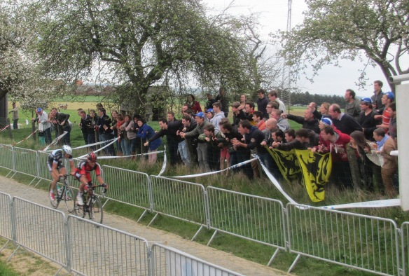 Belgians attack on the Oude Kwaremont