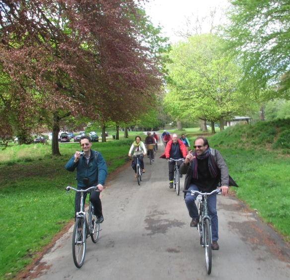 Spring trees in Phoenix Park Dublin