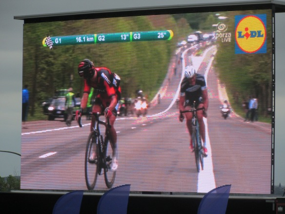 Tour of Flanders on the big screen