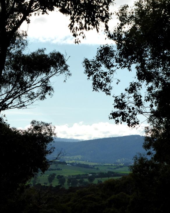 Towards Kinglake National Park from Yarrambat