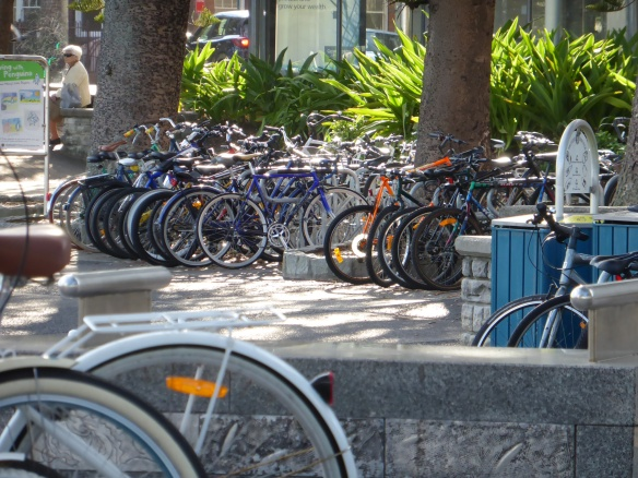 Bikes at the Manly Ferry terminal