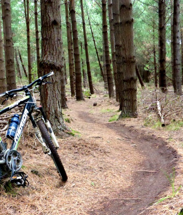 Sandy Point Mountain Bike Area Invercargill