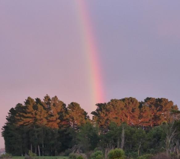 Winter rainbow over Invercargill