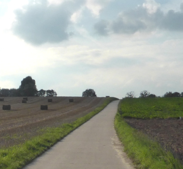 Cycle route to lasne