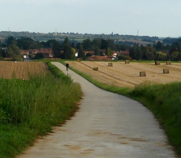 Looking towards Mousty on the cycle path