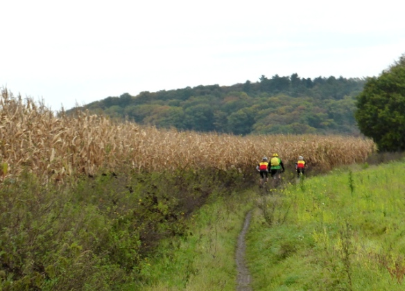 Autumn mountain biking in Wallonia Belgium 2014