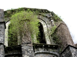 Villers la Ville Abbey overgrowth