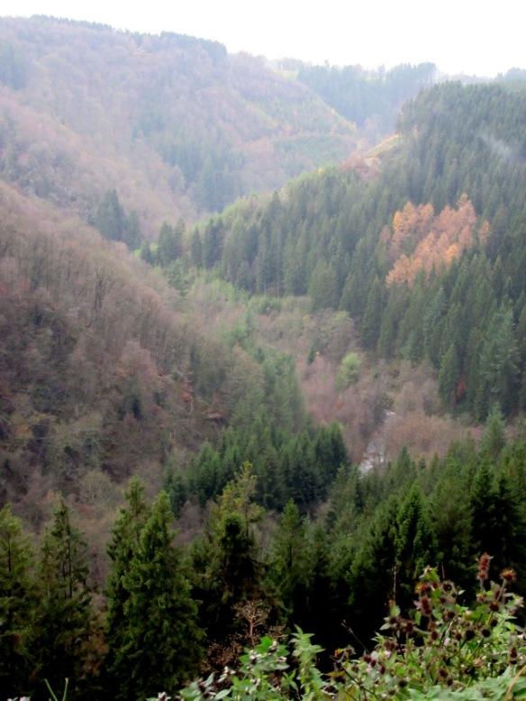 Gue la Warche - Reinhardstein Ardennes