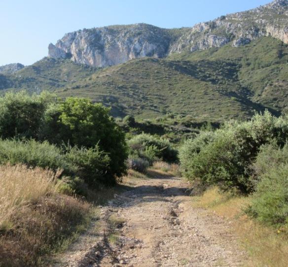 North Cyprus gravel road network mountain biking