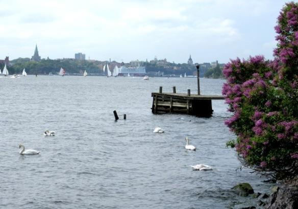 Djurgården looking towards Stockholm